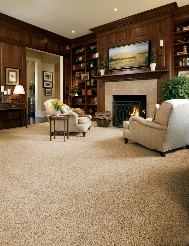 Stainmaster Carpet Living Room